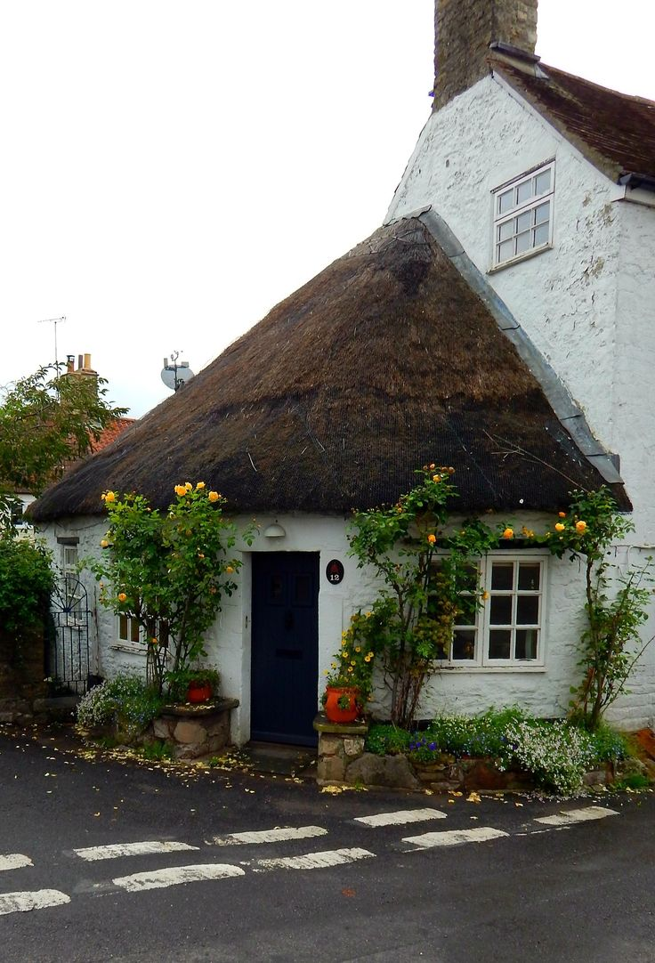 Thatched cottage traduction