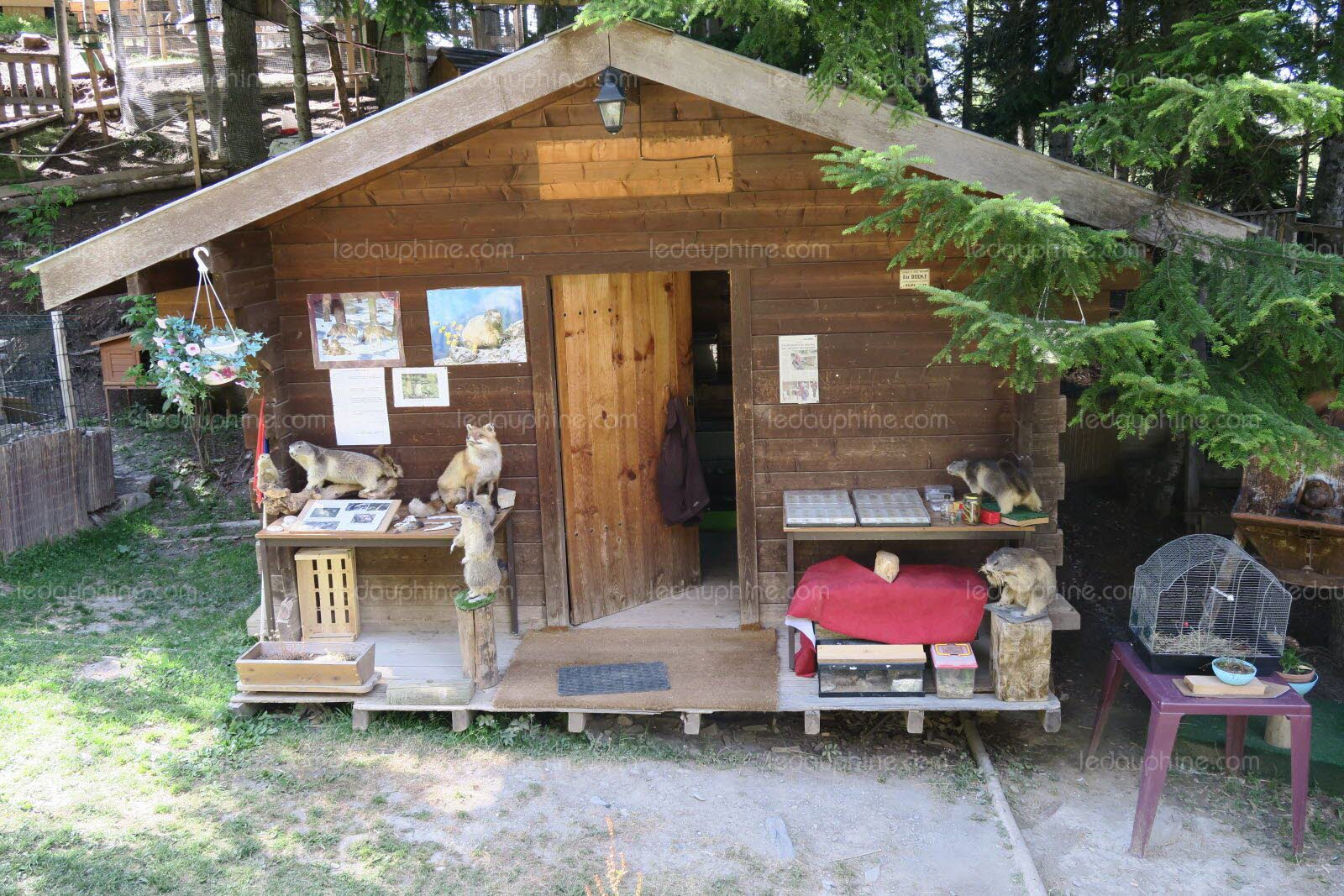 Cottage dans parc animalier