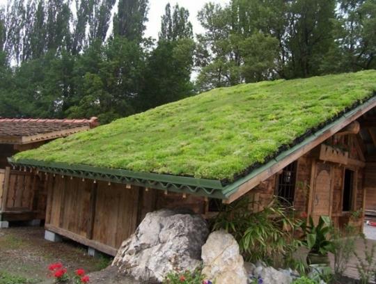 Cabane jardin toit vegetal - Châlet, maison et cabane
