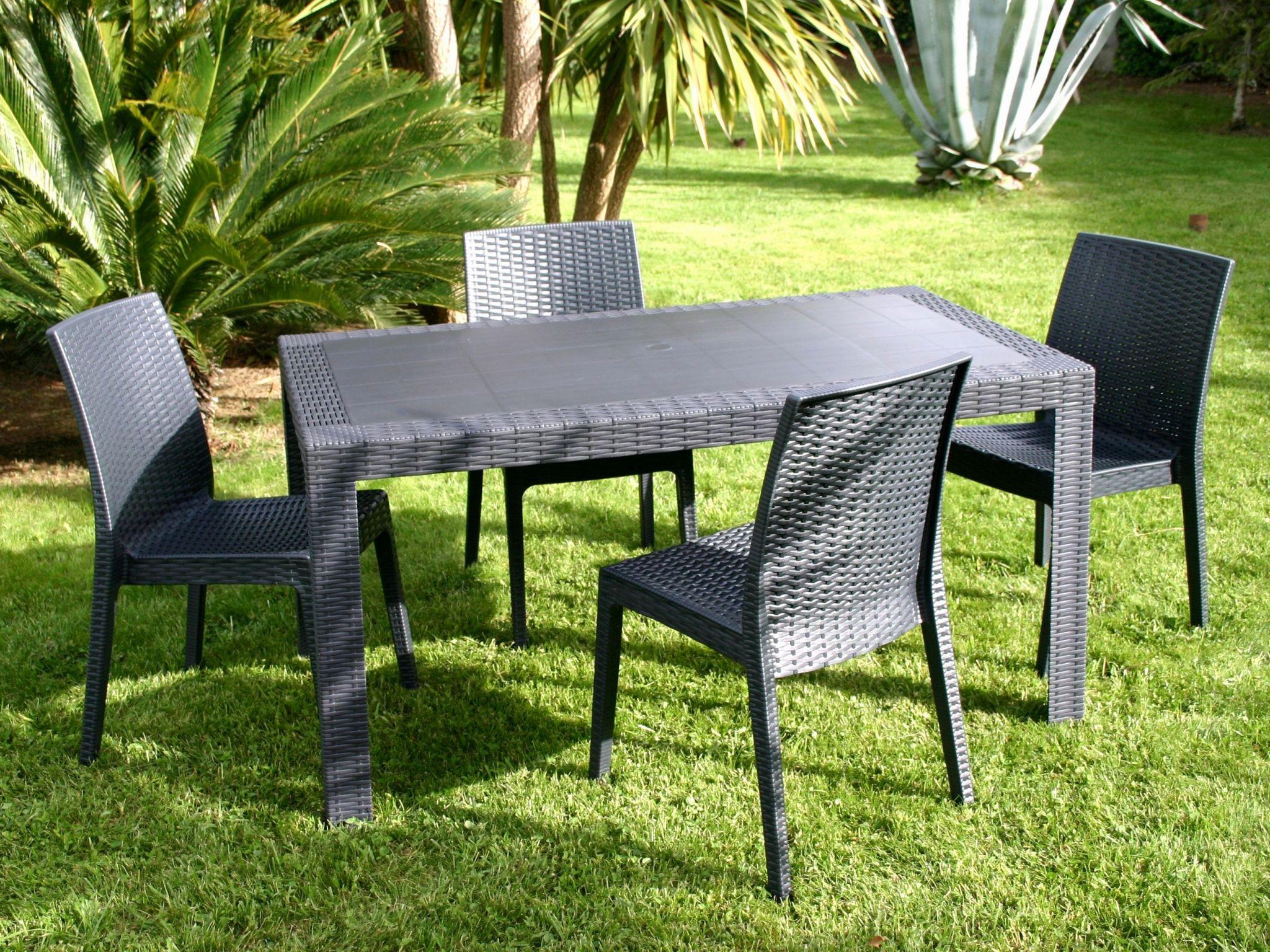 mobilier de jardin resine tressee carrefour  châlet